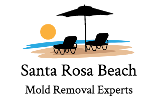 Santa Rosa Beach Mold Removal Experts